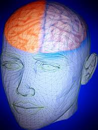 What Is Human Intelligence;What Is The Nature of Intelligence Test(IQ)