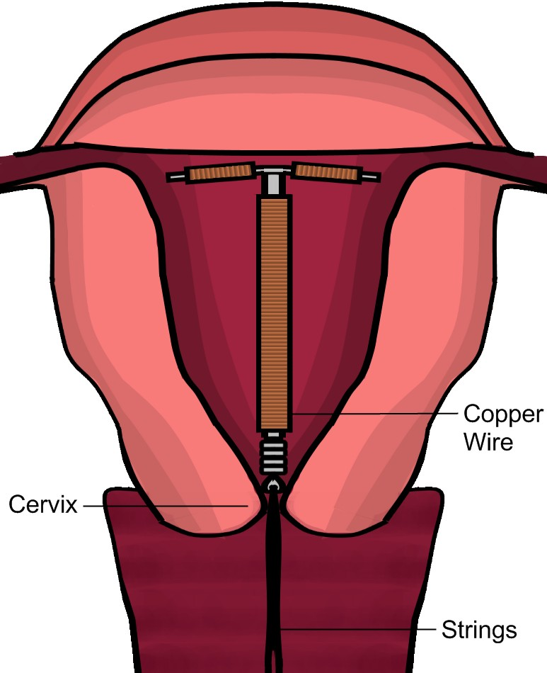 Complete Guide About Vaginal Exam For Nurses