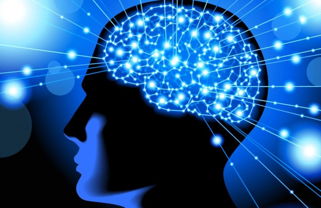 What Is Cognitive Neuroscience:Understand The Behavior Of The Mind