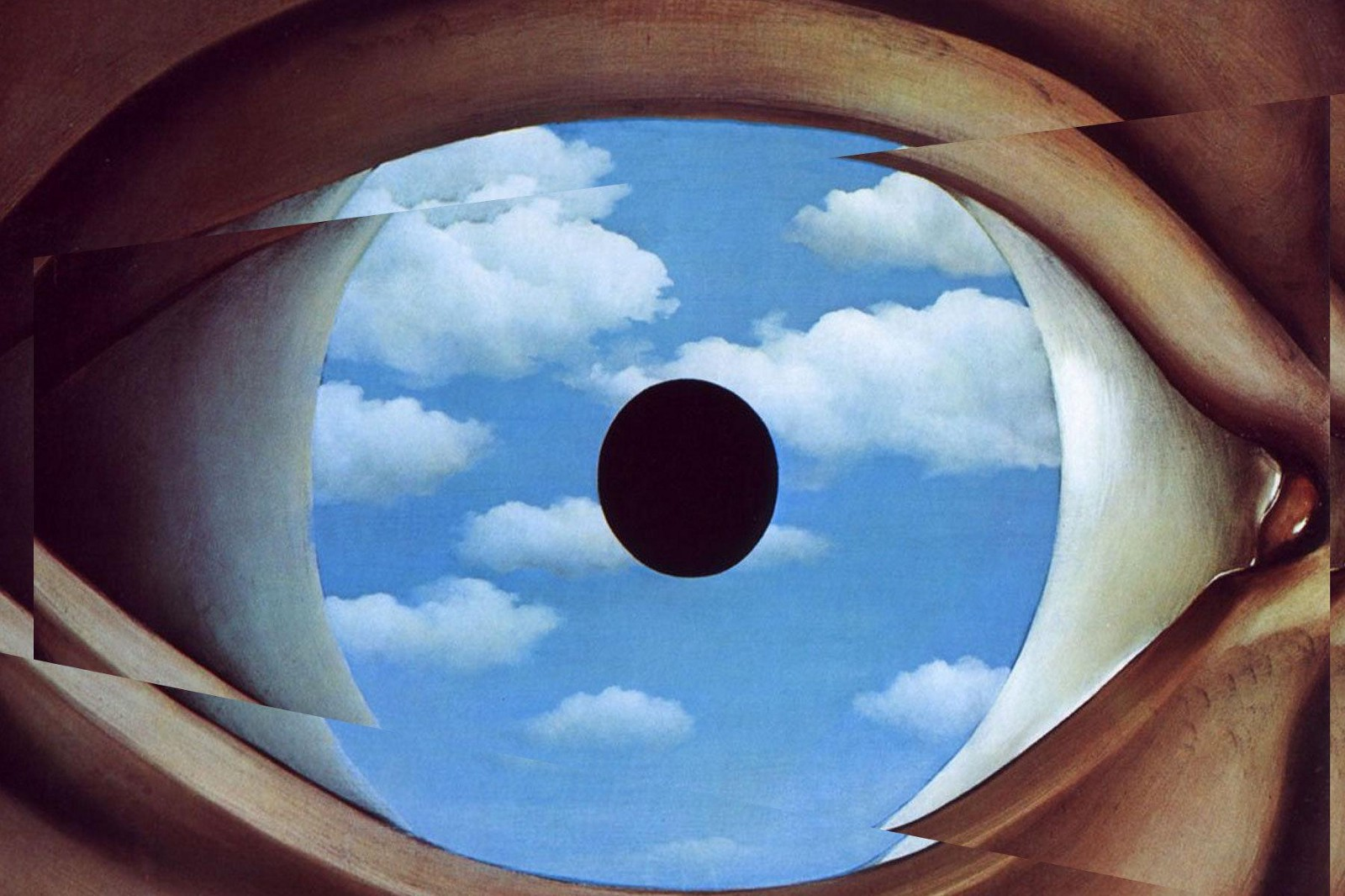What Is Perceptual Illusions In Psychology;5 Facts You Must Know
