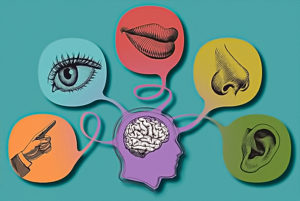 What Is Sensory Register In Memory;What Does It Do?
