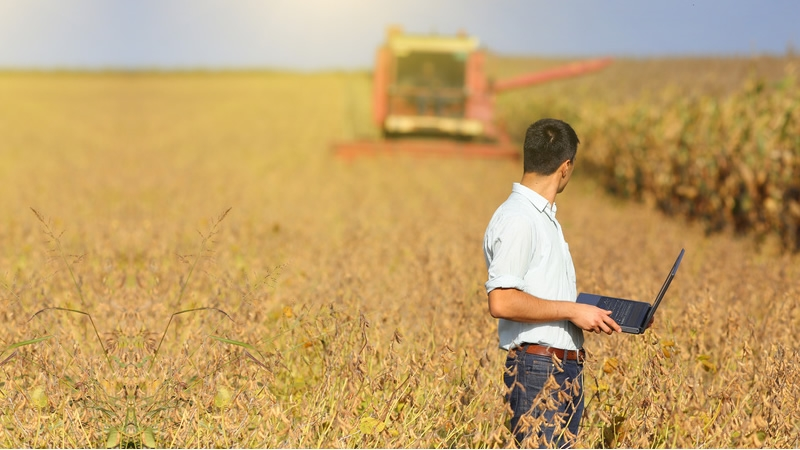 What Is Agricultural Consultant;What Does It Do