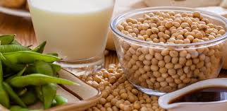 Effectiveness of Soy in reducing the risk of hyperlipidaemia