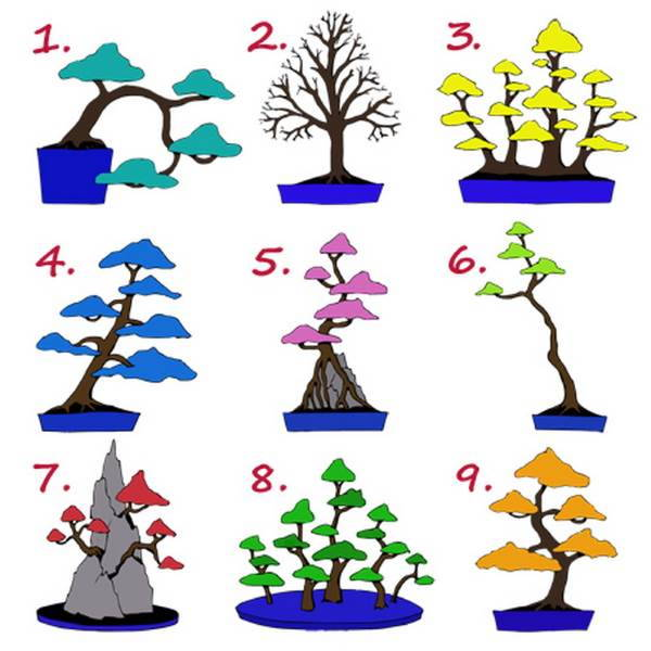 select your best tree